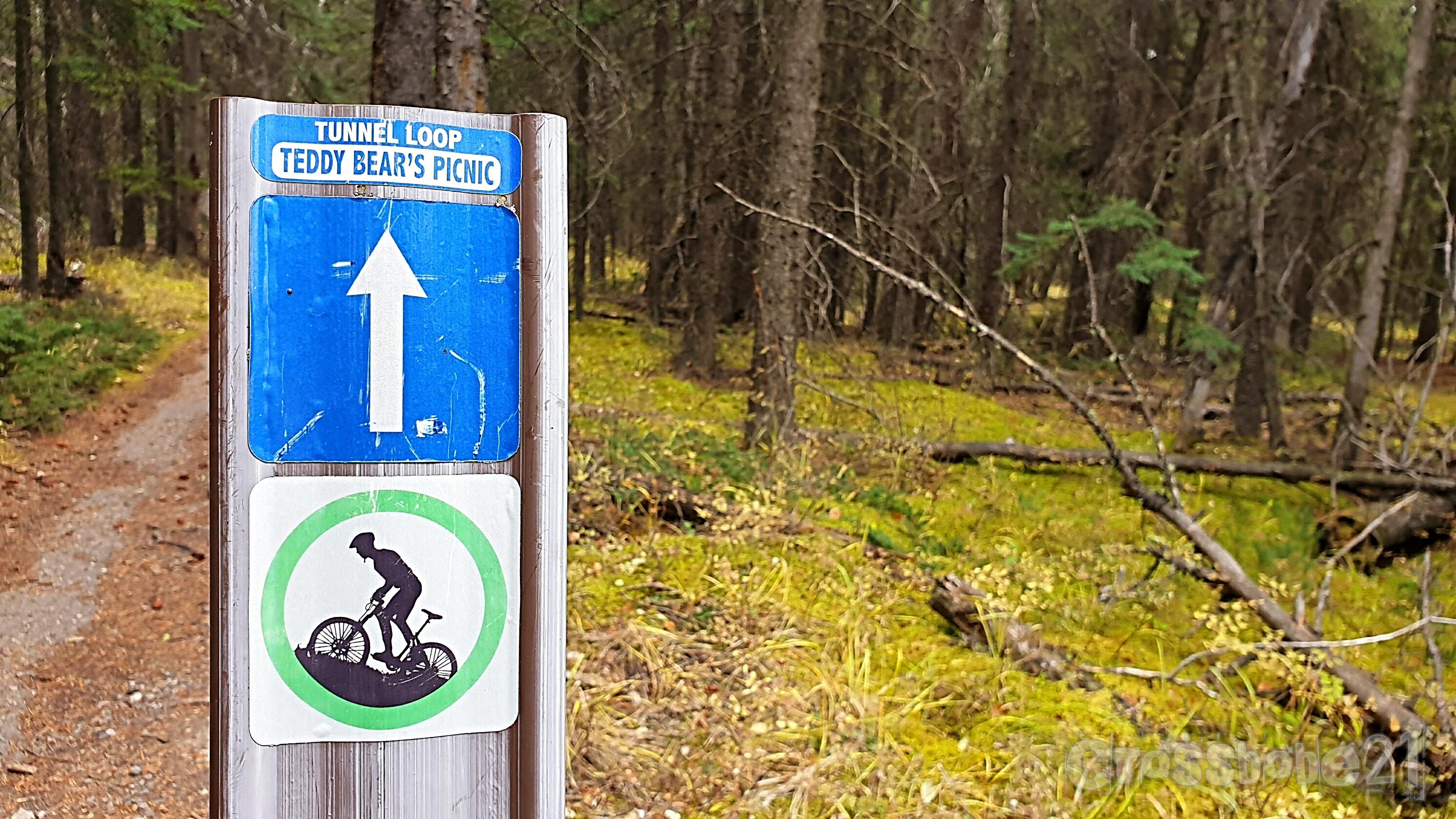 Trail für Trail